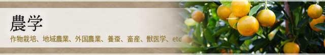 農学・農業の専門書を売るなら、藍青堂書林の高価買取にお任せください